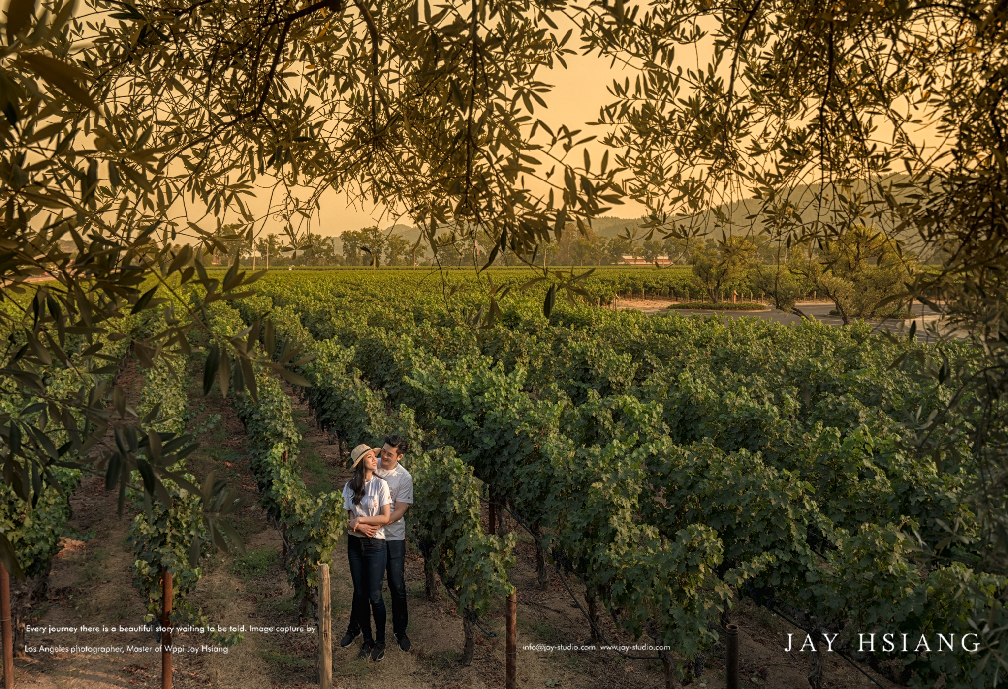 Napa Valley Engagement photo